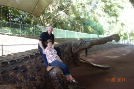 Not real! (the crocodile)